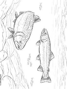 Trouts-coloring-pages-3