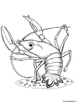 crayfish-coloring-pages-14