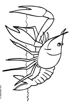 crayfish-coloring-pages-2