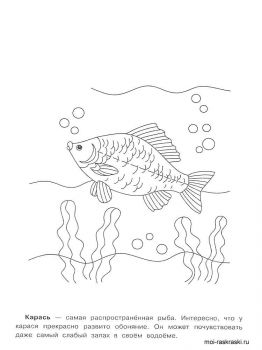 crucian-coloring-pages-4