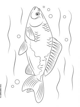 crucian-coloring-pages-5