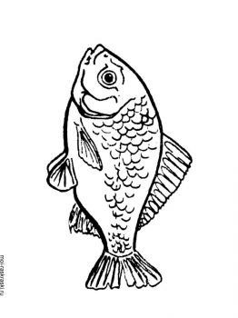 crucian-coloring-pages-6