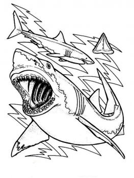 coloring-pages-animals-sharks-10