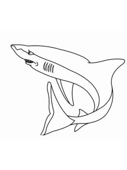 coloring-pages-animals-sharks-14