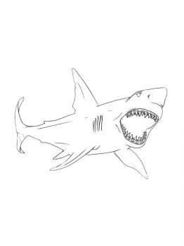 coloring-pages-animals-sharks-4