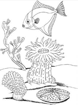 underwater-world-coloring-pages-18