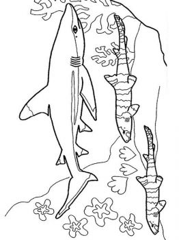 underwater-world-coloring-pages-7
