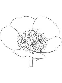Buttercup-coloring-pages-1