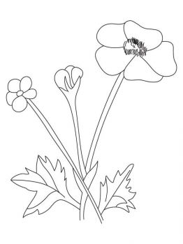 Buttercup-coloring-pages-4