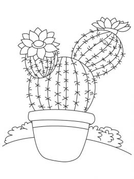 Cactus-flower-coloring-pages-11