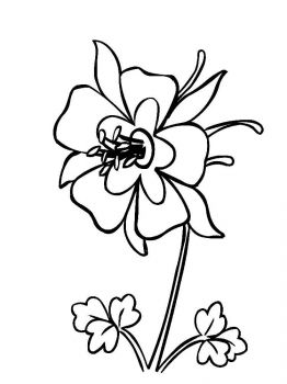 Columbine-flower-coloring-pages-3