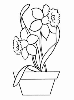 Daffodil-flower-coloring-pages-7