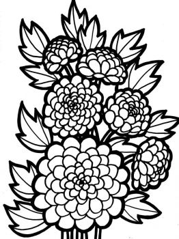 Dahlia-flower-coloring-pages-7