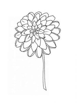 Dahlia-flower-coloring-pages-8