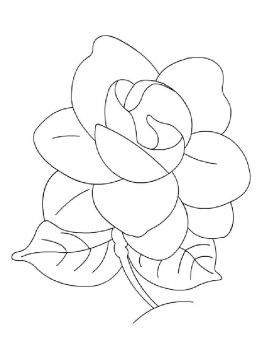 Gardenia-flower-coloring-pages-1