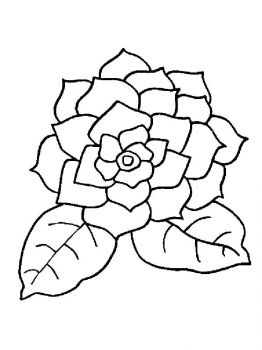 Gardenia-flower-coloring-pages-10