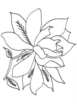 Gardenia-flower-coloring-pages-4