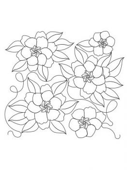 Gardenia-flower-coloring-pages-5