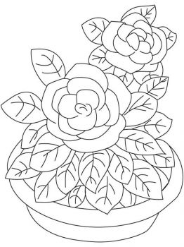 Gardenia-flower-coloring-pages-8