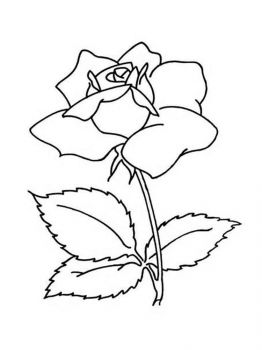 Gardenia-flower-coloring-pages-9