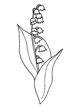 Lily-of-the-valley-flower-coloring-pages-10