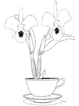 Orchid-flower-coloring-pages-9