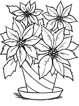 Poinsettia-flower-coloring-pages-1