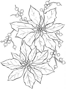 Poinsettia-flower-coloring-pages-3