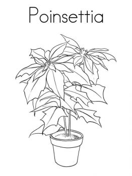 Poinsettia-flower-coloring-pages-5