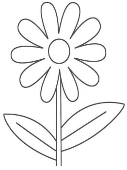 chamomile-flower-coloring-pages-1