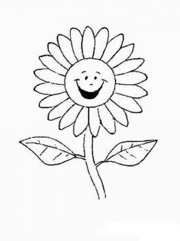 chamomile-flower-coloring-pages-13