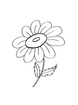 chamomile-flower-coloring-pages-15