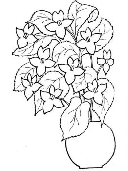 flower-in-vase-coloring-pages-19