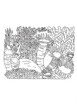 Corals-coloring-pages-13