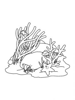 Corals-coloring-pages-4