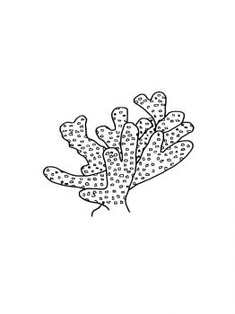 Corals-coloring-pages-9