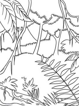forest-coloring-pages-13