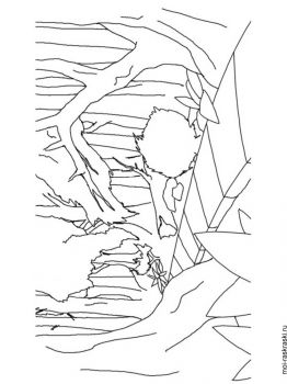 forest-coloring-pages-29