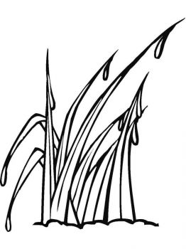 trava-coloring-pages-15
