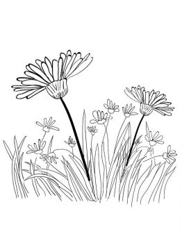trava-coloring-pages-18