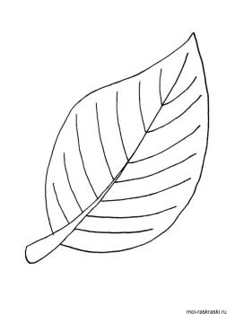 leaves-coloring-pages-1