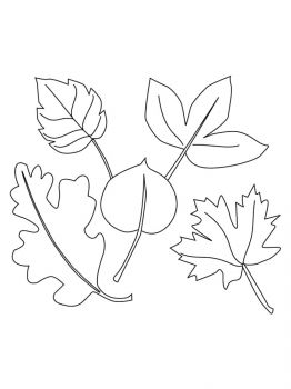 leaves-coloring-pages-12