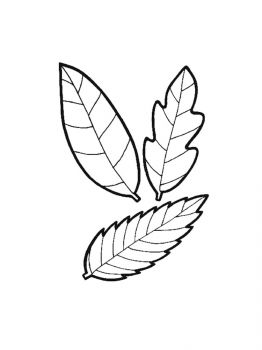 leaves-coloring-pages-13