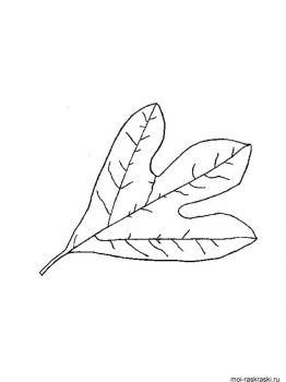 leaves-coloring-pages-29