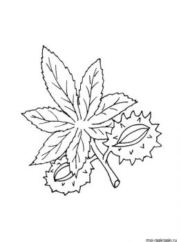 leaves-coloring-pages-30