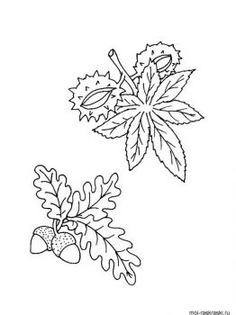 leaves-coloring-pages-31