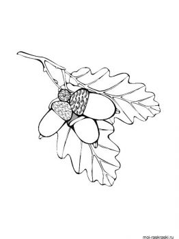 leaves-coloring-pages-32