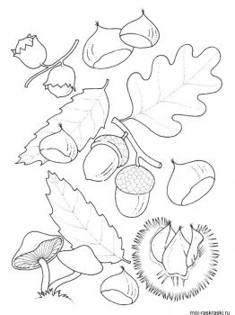 leaves-coloring-pages-34
