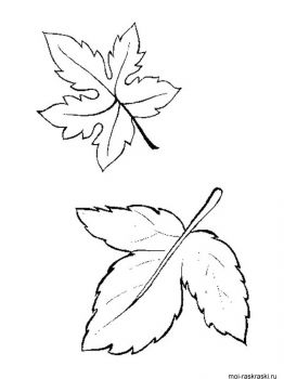 leaves-coloring-pages-41