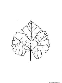 leaves-coloring-pages-42